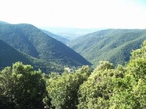 vistes ruta panta de vallfornes - copia